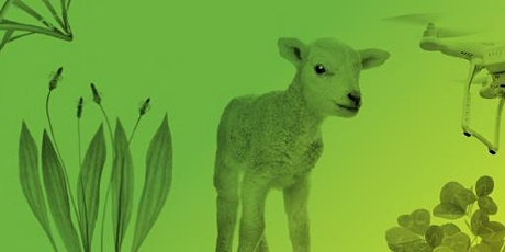 B+LNZ Waikato AgInnovation Conference 2020 tickets