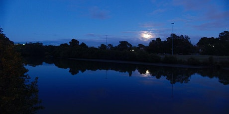 Full Moon Walk : Cooks River Tempe Reserve tickets