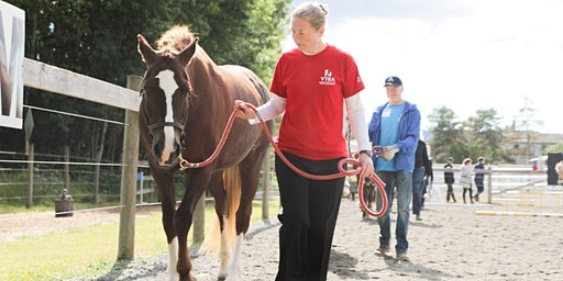 Volunteer Training - Horse Handler