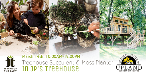 Kid's Succulent Workshop in JP's Treehouse