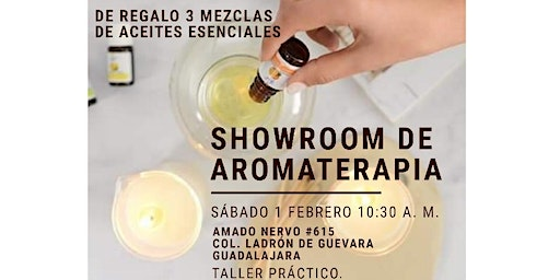 SHOWROOM DE AROMATERAPIA