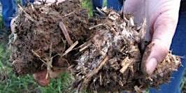 Regen Ag - Soil Health Workshops parts A and B