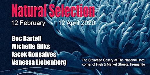 Natural Selection Art Exhibition - Bartell, Gilks, Gonsalves, Liebenberg