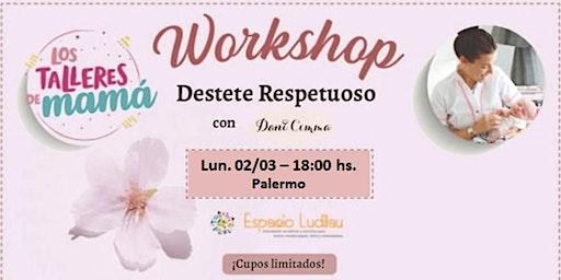 2° Workshop Destete Respetuoso @lostalleresdemama @danicimma_lactancia