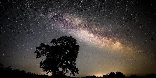 Yoga, Mindfulness and Dark Sky Festival night walk