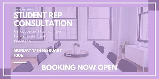 Rep Consultation - Session 1