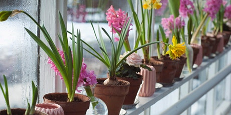 Thursday Drop-In: Indoor Gardening tickets
