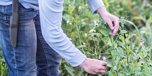Perennial Pruning Workshop