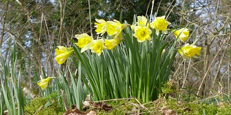 Blashford Lakes Wildlife Tots: March into Spring tickets