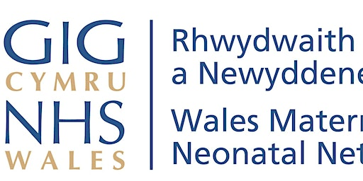 Wales Maternity and Neonatal - Safeguarding Conference