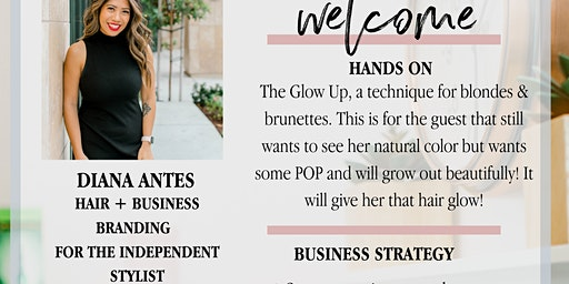 Diana Antes Hair hands-on & business branding