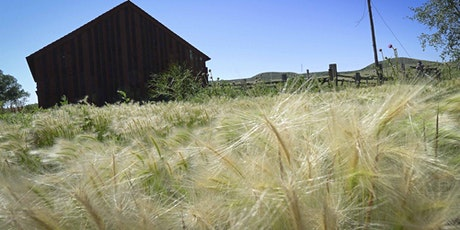 Schweiger Ranch Nature Hike:  Plants & Grasses tickets