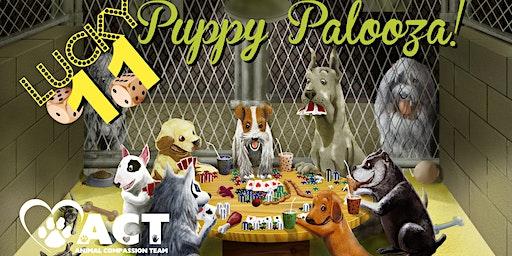Puppy Palooza  Lucky 11, Viva Paws Vegas