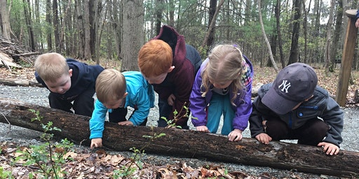 Nature Explorers - BUDDING GARDENERS