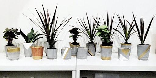 Hop Into Spring: DIY Cement Planter Workshop