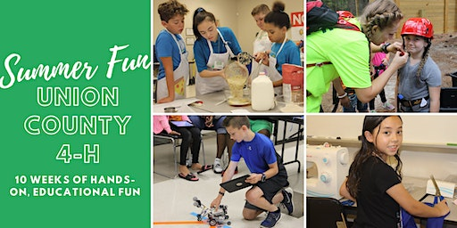 Union County 4-H Summer Fun Day Camp: Animal Adventures
