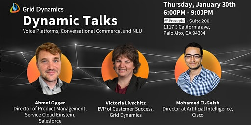 """Dynamic Talks Silicon Valley: """"Voice Platforms, Conversational Commerce, and NLU"""""""