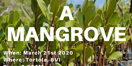 Plant a Mangrove tickets