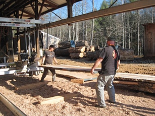 Thick Lumber Live Edge Slab Business Workshop-CANCELLED-now October 30 2020 tickets