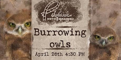 Burrowing Owl Field Trip tickets