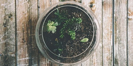 DIY Terrarium Workshop with Burwood Brickworks tickets