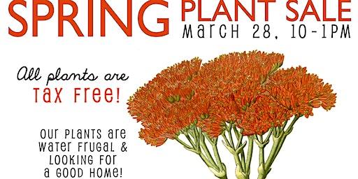 Spring Plant Sale Fundraiser at SLO Botanical Garden