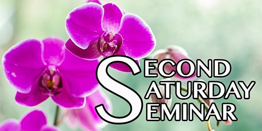 Second Saturday Seminar: All About Orchids with Drew Mullin