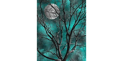 """Sip&Paint """"Turquoise Tree"""""""