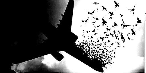 In Memory of Flight PS752