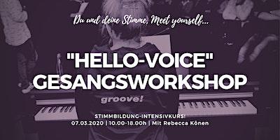 HELLO-VOICE! Deine Stimme & Du/Gesangsworkshop