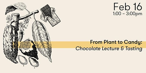 From Plant to Candy: Chocolate Lecture & Tasting