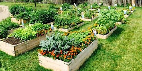 Community Garden Planning