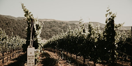 Winery Reflections Pop-Up Tasting Event  tickets