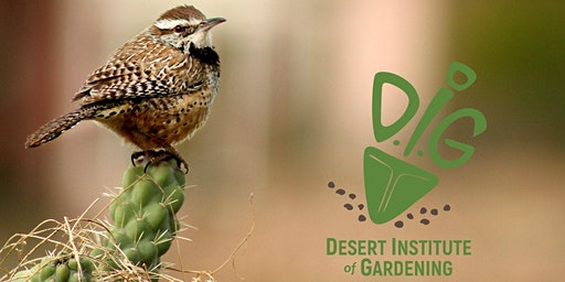 Desert Institute of Gardening: Landscaping For Birds