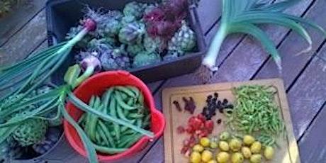 Planning your winter vegetable garden tickets