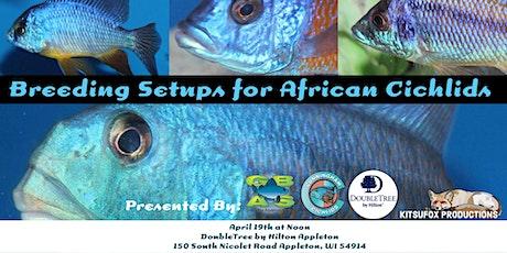 Breeding Setups for African Rift Lake Cichlids with Josh Cunningham tickets