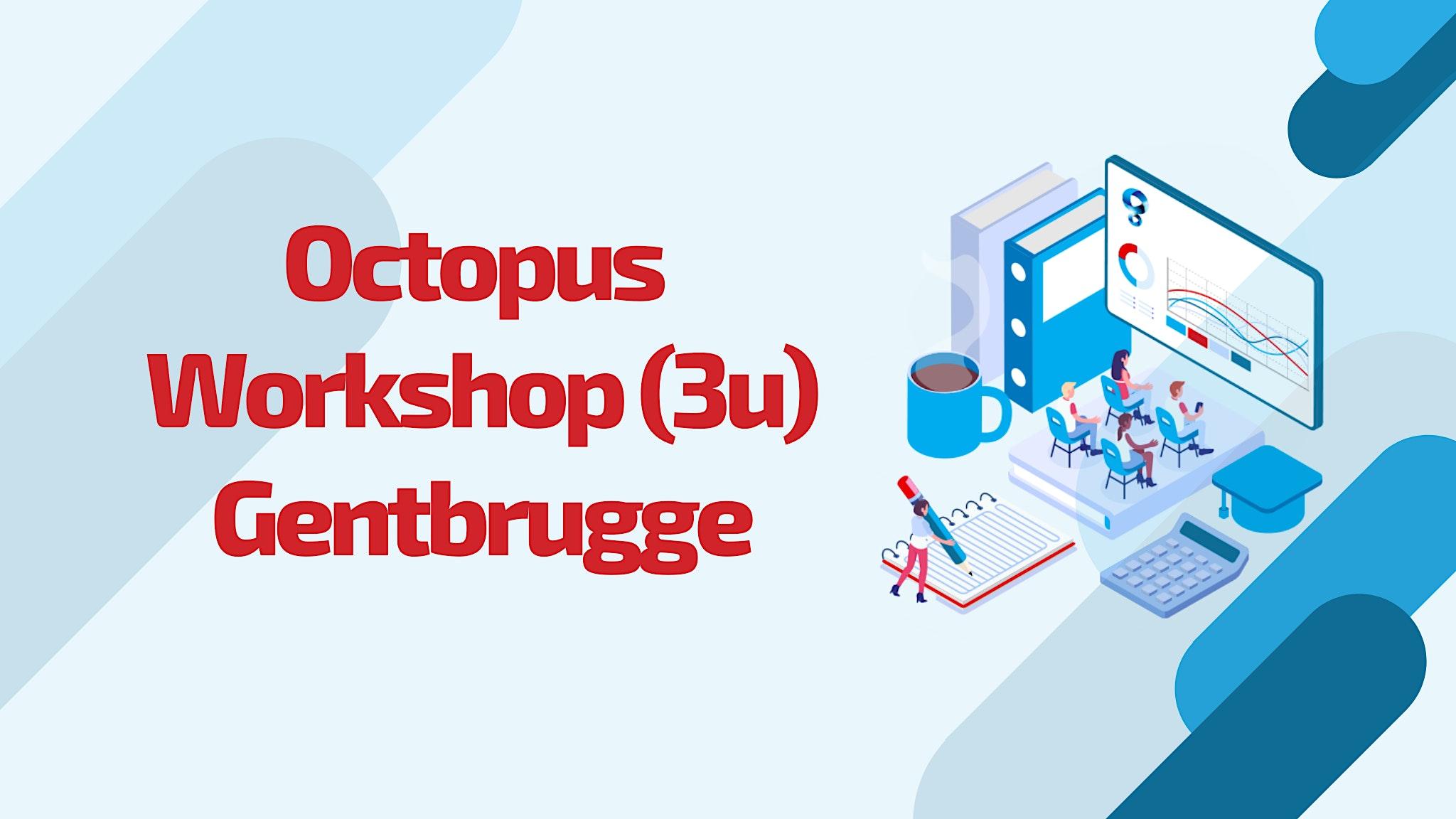 Octopus opleiding: Gentbrugge