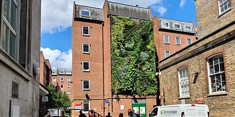 Immersive Living Walls and Living Pillars CPD tickets