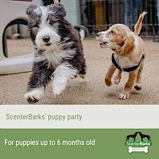ScenterBarks' Puppy Party 2020 tickets