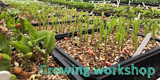 'Grow Your Own' gardening workshop