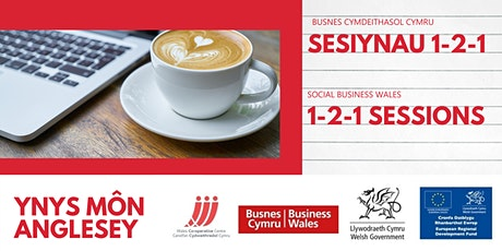 Assistance for New Social Businesses - 1to1 support session in Anglesey tickets