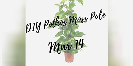 Pothos Moss Pole Workshop tickets