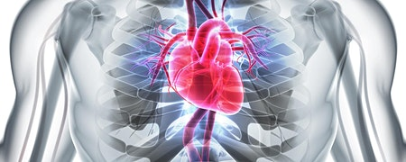 Palpitations,arterial fibrillation & Cardiac Imaging Diagnostics