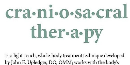 "CranioSacral Therapy Group: ""SER1 Review"""