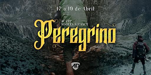 ACAMP ADOLES 2020 | O PEREGRINO  - ALCANCE CURITIBA