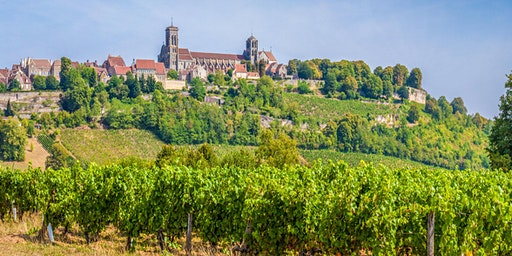 Wine Tour of France