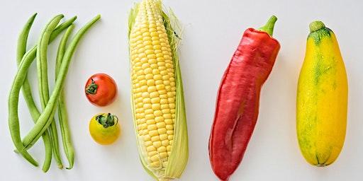 Sustainable Food Workshop
