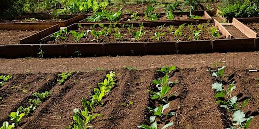 Growers Forum - Healthy Soils Workshop (RFSA 0771)