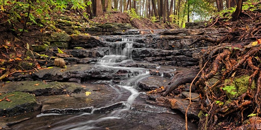 Hiking the Local Woods, Waterfalls and Streams – Houghton Falls