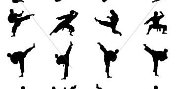 Fitness: Self defense Karate